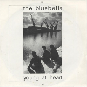 15.The Bullbells - Young at Heart